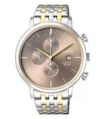 RELOJ CITIZEN AN3614-54X